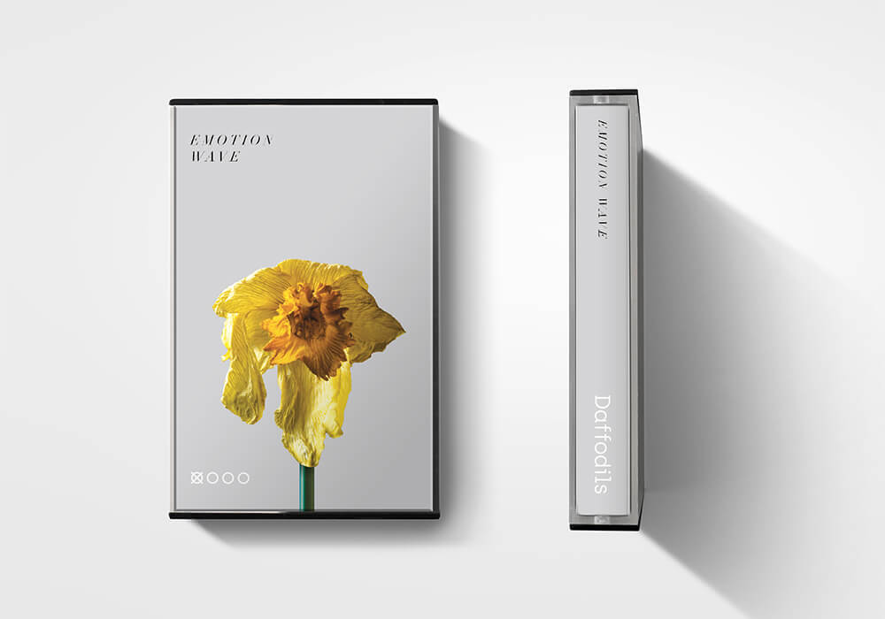 Daffodils-Emotion-Wave-Cassette-Case